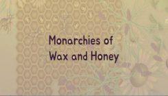 Monarchies.io