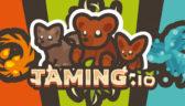 Taming.io